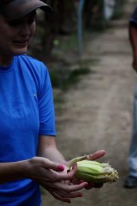 Banana Farm near Riversdale November 2013