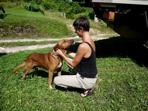 Saying goodbye to Burt, the dog Barton Creek November 2013
