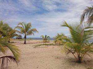 Punta Uva, March 2014